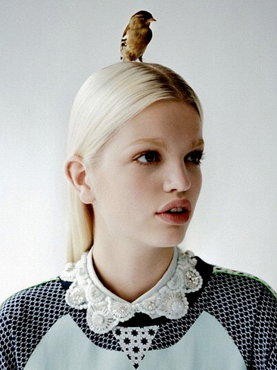 rosettes:  Daphne Groeneveld by Tim Walker, O´2nd Fall/Winter 2012 Ad Campaign