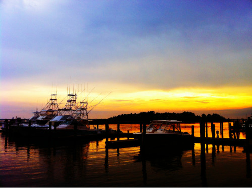 Morehead City.
