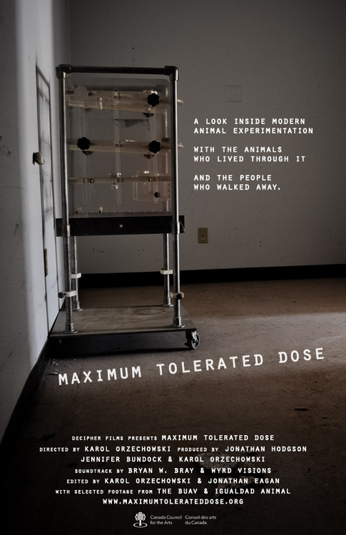 Maxium Tolerated Dose Movie Poster