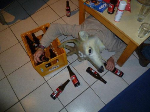 Deer Mask Man Gets Sloppily Drunk Beer for a deer