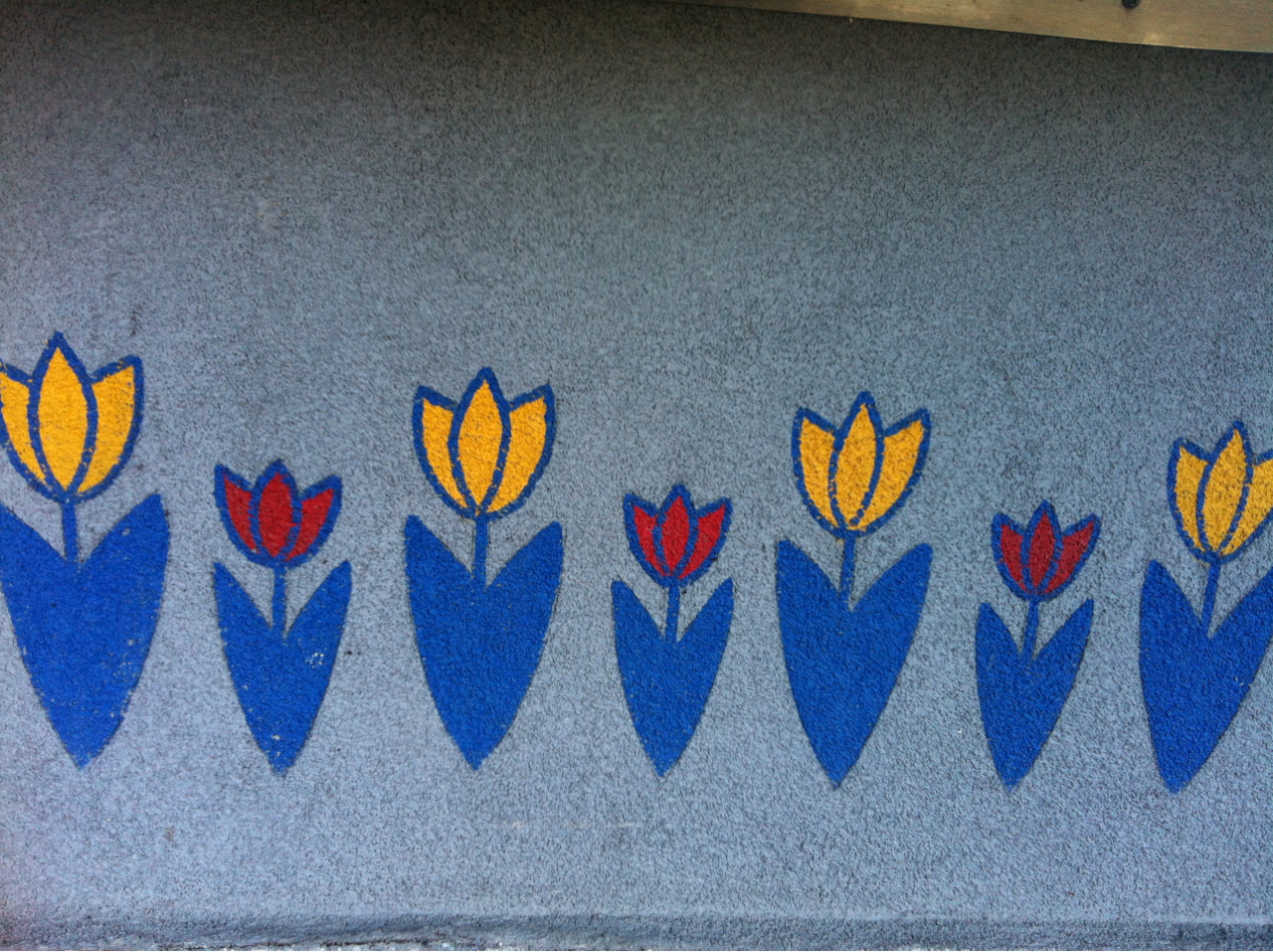 POP QUIZ: Name these tulips! Where can they be spotted in Humboldt?