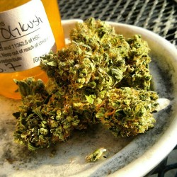 itsbrandonoh:  Woody OG Kush #weed #marijuana #medical #nofilter #dank #fire (Taken with Instagram at Tha Projects)