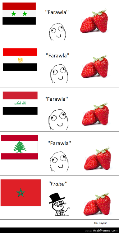 mylifeisarabic:  My family is from Syria and we say fraise not farawla  ^ agreed