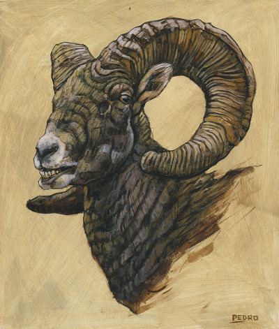 "knifeagainstclaw:  CROWN OF HORNS (DESERT BIGHORN), ACRYLIC ON PANEL, 11""X14"", © ANTHONY PEDRO"