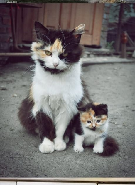 mom & daughter..cute