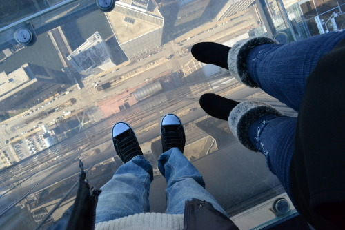 Sears Tower, Chicago, Illinois; December 2011
