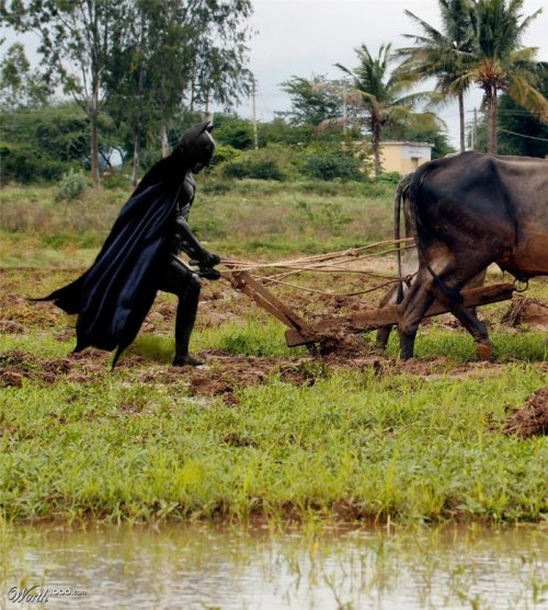 Batman Plowing a Field On the outskirts of Gotham City sits Gotham Country.