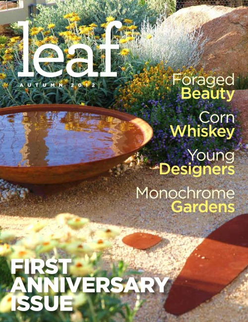 Our First Anniversary Issue will launch on 9/13!!