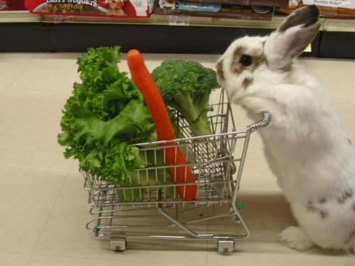 eatcleanmakechanges:  shopping for healthy Easter dinner groceries…