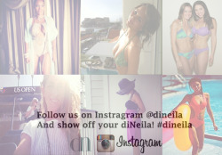 diNeila on Instragram! Get the inside view!