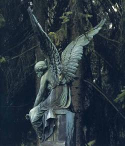 Angel (Augsburg) by Isolde Ohlbaum
