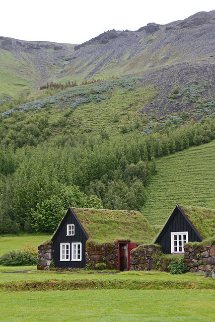 floraltablerunner:  visitheworld:  Traditional turf farmhouses in Skógar, Southwest Iceland (by daniel.virella).