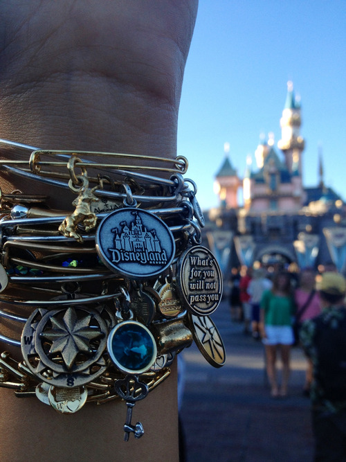 dream-breathe-disney:  i want thattt