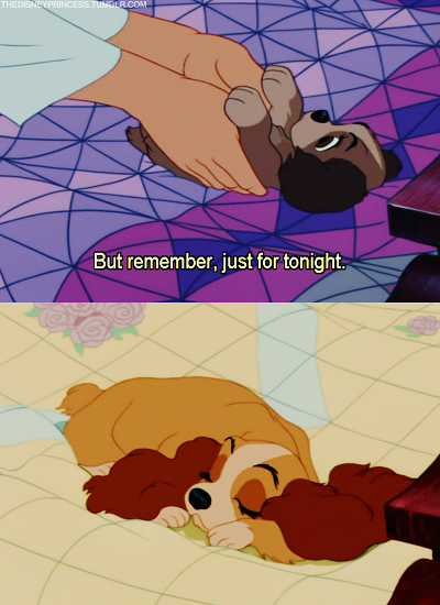 heartdisney:  story of my life with my doggies :)  This is how they get ya.  Being all cute and such.
