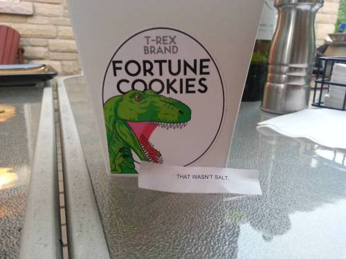 Remember when T-Rex invented his own fortune cookies?  THEY TURNED REAL.  YOU CAN BUY THEM.  THE WORLD IS SO GREAT SOMETIMES there's no going back to the way things were
