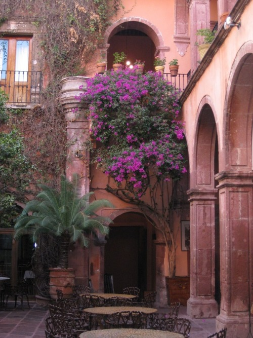 bluepueblo:  Courtyard, Guadalajara, Mexico photo via lorna