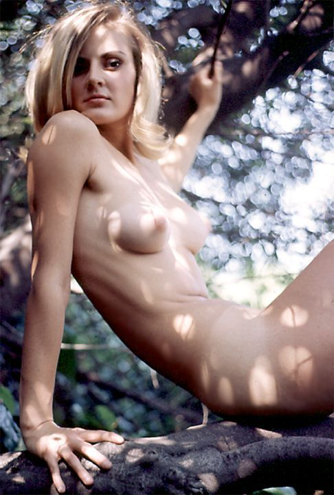 Heather Ryan 1960s. Hello tumblr friends!   … I have returned from my trip to the woods.