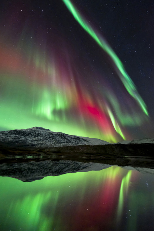 Sky Show  (photo by Tommy Eliassen) The dazzling Aurora Borealis over Høgtuva Mountain in Norway. The Earth's magnetic field funnels particles from the solar wind down over the planet's polar regions. More than 80 km above the ground, these particles collide with atoms and molecules of gas in our atmosphere, causing them to glow in the characteristic colours of green and pale red for oxygen and crimson for nitrogen. (via: Space.com)