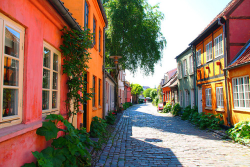 visitheworld:  Møllestien, the most beautiful street in Aarhus, Denmark (by どこでもいっしょ).