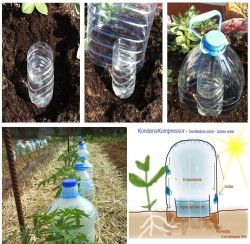 Let's go green people!!! :) <3 it! permatech:  Automatic watering system. via statementofporpoise