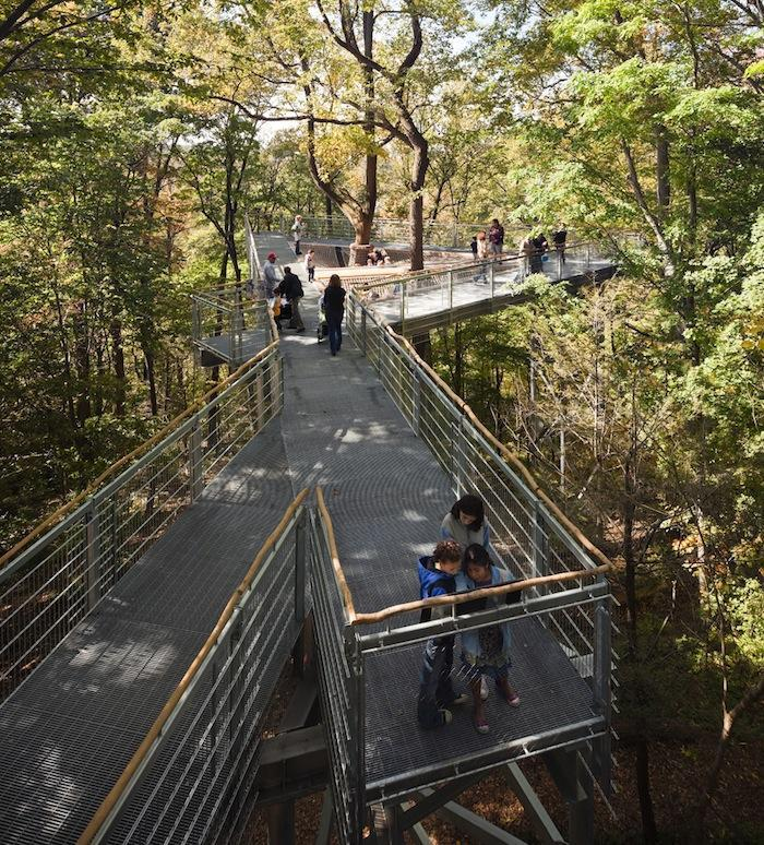 Tree Walks by Metcalfe Architecture & Design Wouldn't it be nice to walk among the endlessly high trees, perhaps getting their perspective on the world?  A few of these walks have already been created, being designed for this very reason and many more. Metcalfe Architecture and Design are the creators behind this original idea, who connected the tree lines with a giant bridge that allows the visitors to cross between the trees.  (via Gardenista)