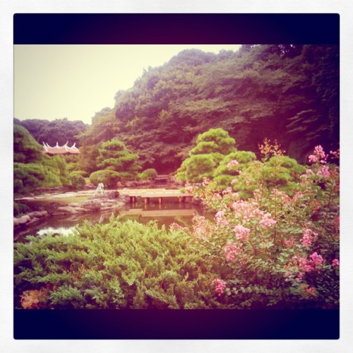 Shinjuku park lake  (Taken with Instagram at Somewhere In Shinjuku)
