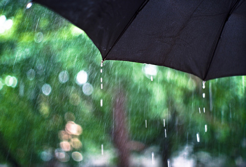 spring rain by sicamicanico on Flickr.