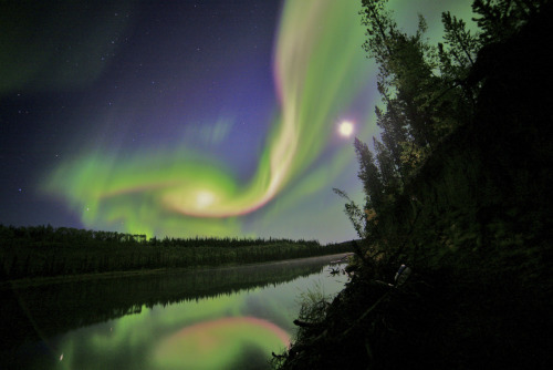 Photo of the Day: Swirls of green and red appear in an aurora over Whitehorse, Yukon. The aurora was due to the interaction of a coronal mass ejection (CME) from the sun with Earth's magnetosphere. (Photo: NASA)
