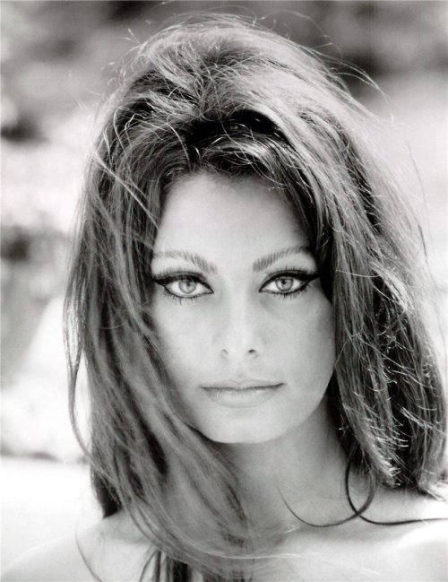 retrogirly:   Sophia Loren
