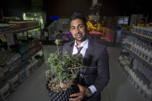 Inside Oakland's pot politics Oakland pot entrepreneur Dhar Mann (pictured) has become a national figure, expanding his medical marijuana business weGrow across the country. But newly obtained emails and a police report offer hints of Mann's close relationship with city leaders that helped build his pot empire. Get a behind-the-scenes look at the city politics and business dealings that fueled the Oakland's marijuana boom from reporter Zusha Elinson. Photo by Adithya Sambamurthy / The Bay Citizen