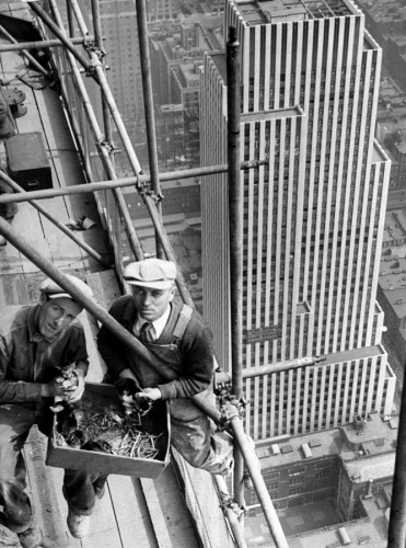 decoarchitecture:  Kittens on the Chrysler Building. collective-history:  Two workers on top of the Chrysler Building hold kittens that were born on the construction site. New York Daily News