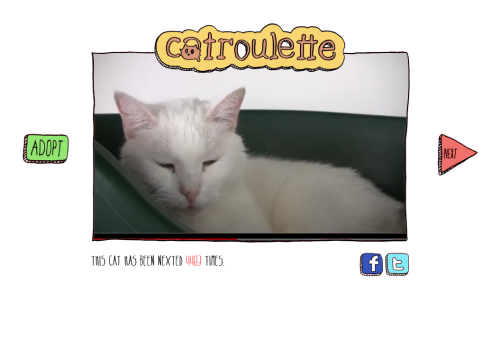 Catroulette lets you randomly adopt cats I think we can all remember a few years back and the Chatroulette phenomenon that took off (and crashed) very quickly. Well this great little adoption website has taken that idea and randomly selects cats every time you visit or click next. It's a clever way for visitors to meet the current cats that are looking for a home. I just feel sorry for the ones that have been 'nexted' over 4000 times. Poor kitty. Go to the site here to meet the cats for yourself.