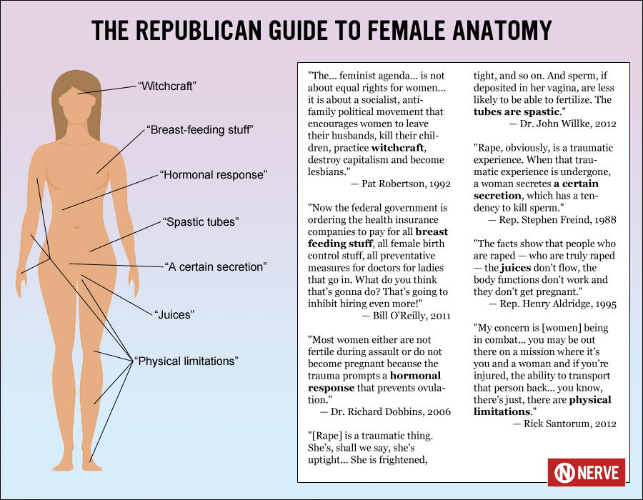 labyrinthinelasermoon:  earlyadaptor:  The Republican Guide to Female Anatomy  My dad just emailed me the article that included this; I personally collapsed into helpless laughter at 'spastic tubes'.