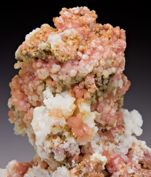 Rhodochrosite with Quartz from Colorado by Dan Weinrich