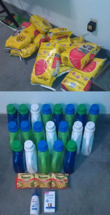 Stocked up tonight… 11 bags of litter, 20 bottles of detergent, 3 bags of Ramen, 2 Biore products, and 1 Milky Way not pictured. Spent $6.72, saved $169.06 for a total of 96% savings. Pretty satisfied with this entire week of couponing. (: