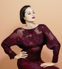 bohemea:  Marion Cotillard - Times Style & Design by Peter Hapnak, Fall 2012
