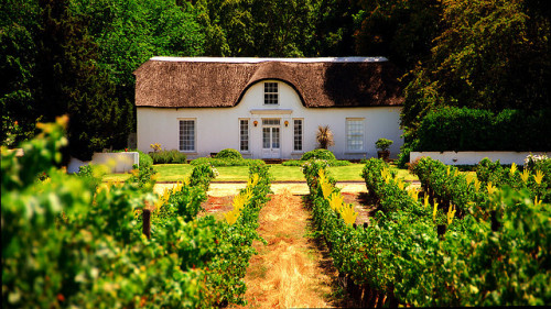 southafricaphotoblog:  Stellenbosch cottage, Cape Winelands, South Africa. Casa em Stellenbosch, Vinhas do Cabo, África do Sul. Photo copyright: slack12