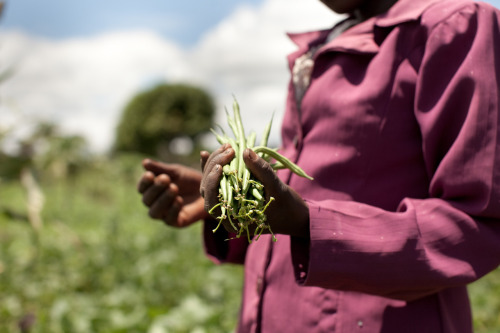 Lucy, a wife and mother, holds some of the crops she grows on her farm in rural Kenya. Learn more at >www.theadventureproject.org.