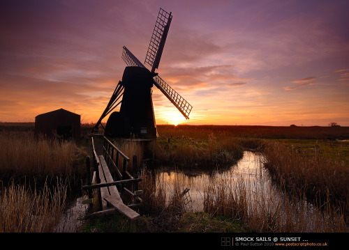 live-2-learn:  windmill at sunset