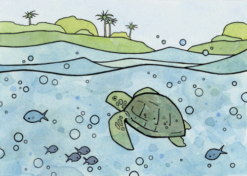 Sea TurtleInk and Watercolor illustration
