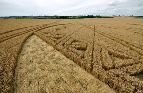 Hackpen Hill, Broad Hinton, Wiltshire, England | Reported 26th August Probably the last crop circle of the 2012 season, one of 68 recorded in the UK this year. It should still be available to visit until Sunday before harvesting
