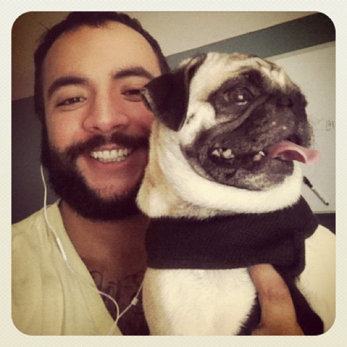 #pug round two. (Taken with Instagram at Vision Property Management)