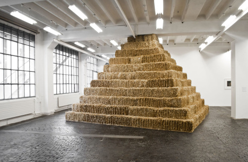 we-find-wildness:  Untitled (straw), 2012  by Noha Mokhtar on view at CAC, Geneva until 14 October, 2012 ➝ centre.ch