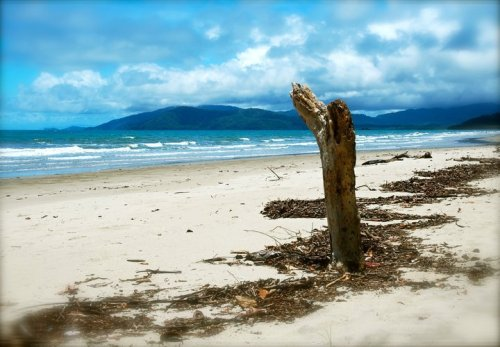 Cape Tribulation, Daintree Coast, QueenslandUploaded by Peter Hornikova