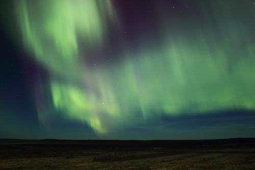 camverdi:  Northern lights in Ukhta, Komi, Russia. September 2012.
