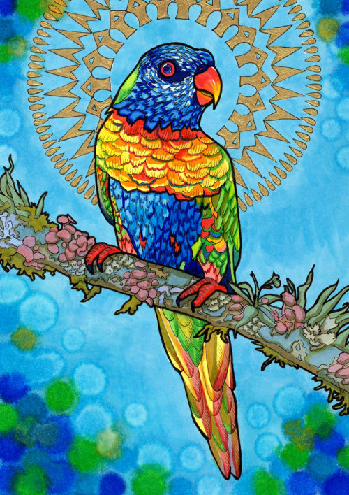 "paintmyworldrainbow:  fuckyeahpsychedelics:  ""Loving Lorikeet"" by PaintMyWorldRainbow  OH BOY! I FOUND MY ARTWORK ON THE INTERWEB!"