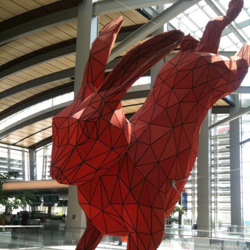 New Sacramento airport sculpture shows the true danger of giant rabbits! (Taken with Instagram)
