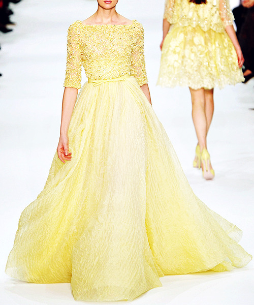 34/50 Favorite Designs of Elie Saab