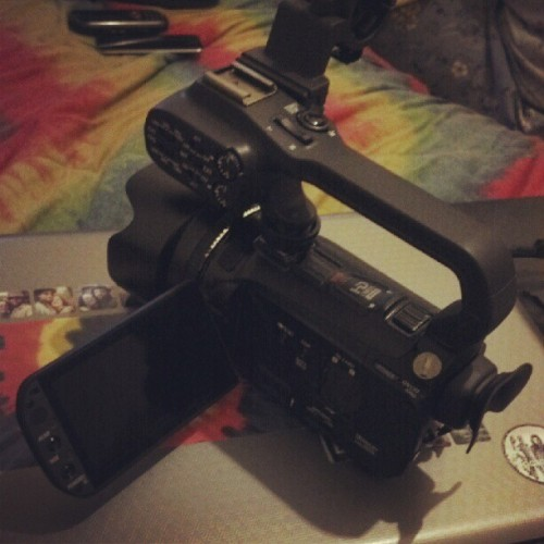 ….I call her Vera! (Taken with Instagram)