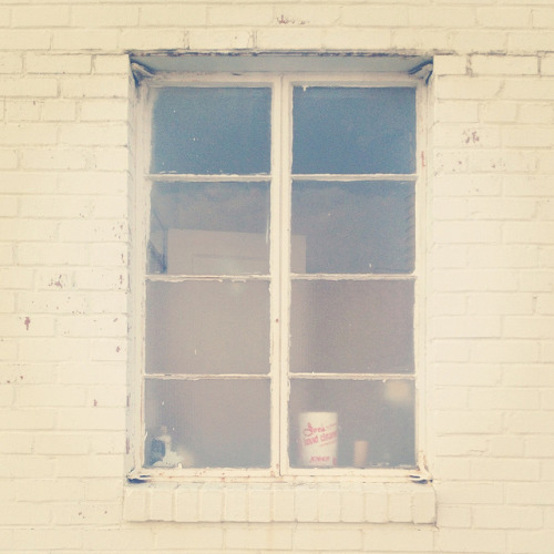 lajoliefille:  sycamore window. by youngfreelost on Flickr.
